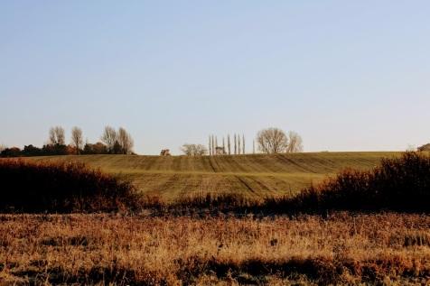 Site at Villa Farm.jpg